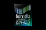 borealis-consulting